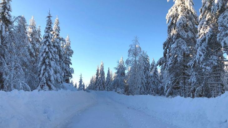 Rallye de Suecia en condiciones perfectas